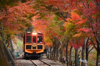 トロッコ列車-1.jpg