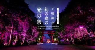 下賀茂神社-2.jpg