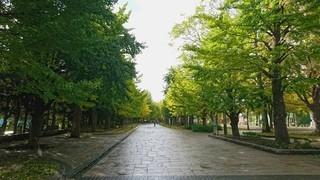 北海道-札幌市-中島公園-1.jpg